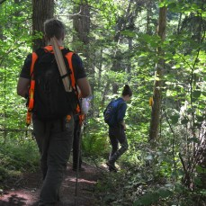 Undergraduate students working during summer at Pack Forest