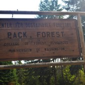 The Center for Sustainable Forestry at Pack Forest