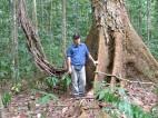 Guiana Shield - 2004