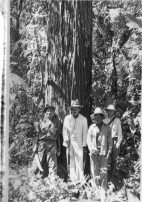 Early forest monitoring in Venezuela led by Jean Pierre Veillon (last to the right in the photo). Photo provided by Giorgio Tonella.